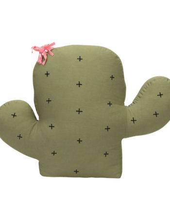 KidsDepot Cushion Cactus Opuntia